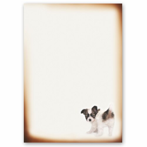 Motif Letter Paper! FUNNY PUPPY