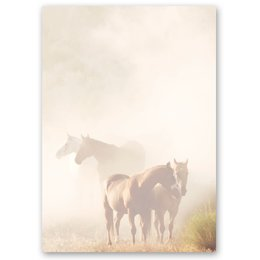 Motif Letter Paper! HORSES IN THE MIST 50 sheets DIN A4
