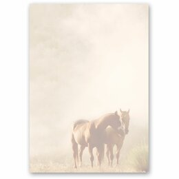 Motif Letter Paper! HORSES IN THE MIST 50 sheets DIN A5