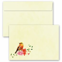 25 patterned envelopes BIRDS CHIRPING in C6 format...